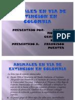 Animales en via de Extincion en Colombia