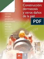 LIBRO DERMATOSIS