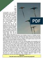 Kite Firebird Feuervogel English