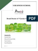 Brand Dossier of Garnier Fructis