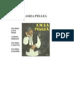 Amza Pellea - Nea Marin