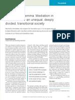 Mediator's Dilemma, Sarah Henkeman