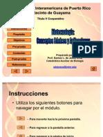 12biotecnologia