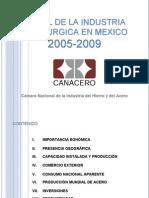 PerfilIndustriaSiderurgica-2005-2009