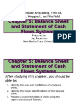 5 Balance Sheet and Statement of Cash Flows Systems 3