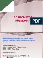Curs Adenomatoza Net