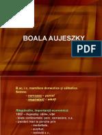 Curs Aujeszky Net