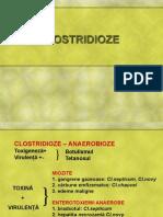 Curs Clostridioze Net