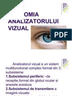 x Curs Anatomia Analizatorului Vizual
