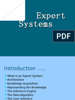 Expert Systems (1)