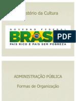 Aparecida Reis_Administração Pública