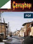 Sivas - Çavuşbaşı Dergisi  Agustos 2011  sayi 2