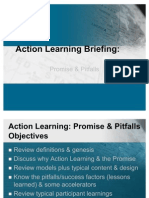 Action Learning Briefing