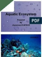 Aquatic ecosystem 1