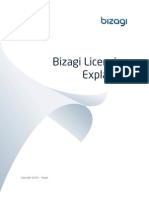 Bizagi Licensing Explained ENG