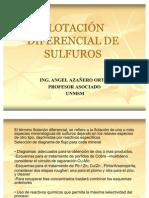 T22114EXPOSICIÓN FLOTACIÓN DIFERENCIAL DE SULFUROS