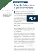 6 Patologías Infecciosas en La Profesión Veterinaria