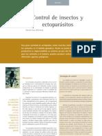 fundamentos doctrinales del cristianismo pdf