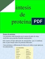 50135588-sintesis-de-proteinas