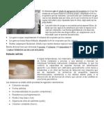 consulta quimica