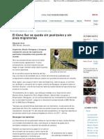 BBC Mundo-El Cono Sur Se Queda Sin Pastizales y Sin Aves Migratorias