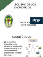 METABOLISMO XENOBIOTICOS