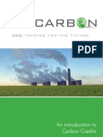 An Introduction to Carbon Credits