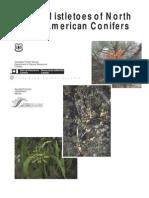 Mistletoes of NA Conifers_rmrs_gtr098
