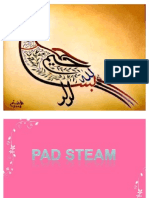 PAD STEAM MACHINE