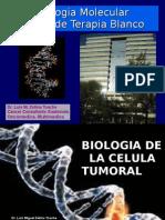 UFM.biologiaMolecular.1