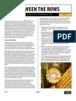 BTR_Estimating Yields of Storm Damaged Corn