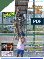 ViveNuevoLeon Com Revista2