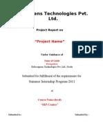 Format of Report