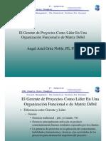 Gerente de Proyectos en Organizacion Matricial Debil