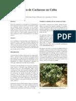 Etnobotánica de Cactaceae en Cuba