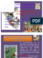 AGRICULTURA Y GANADERIA EN EL PERÚ