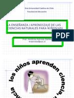 200608142008070.ciclo aprendizaje cs