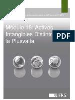 18 Activos Intangibles Distintos de La Plusvalia