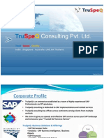 TruSpeQ SAP Services Overview_01