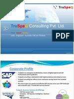 Ulm150 automatedfunctionaltestingusingecattinsapsolution truspeq sap services overview01 fandeluxe Choice Image