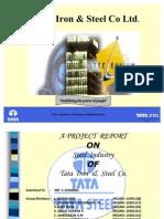 Tata Iron And Steel