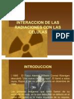 Radiobiología