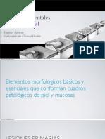 Lesiones Elementales de Mucosa Oral - Evaluacion Clínica de Ulceras Orales