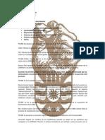Acta CONFECH Universidad del Bio-Bio