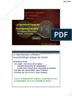 Cours 3. Cycle Cellulaire Mitose