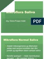 38666726 Mikroflora Saliva