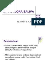 Mikroflora Saliva Drg Aurel