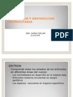 Tema 02 Produccion y Destruccion Eritrocitaria