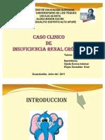 Insuficiencia Renal Grupo 2