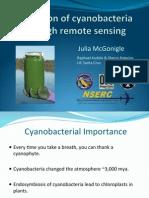 Detection of Cyanobacteria Through Remote Sensing